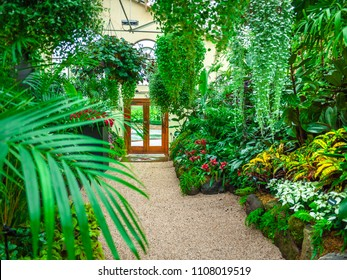 Interior of a conservatory with a variety of green plants. Pebble stone walkway in a beautiful greenhouse.