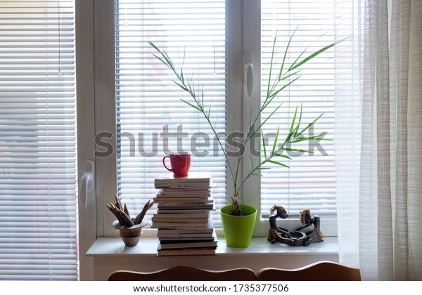 Interior decoration in a modern living room, with palm tree, coffee cup on a pile of books, natural lighting