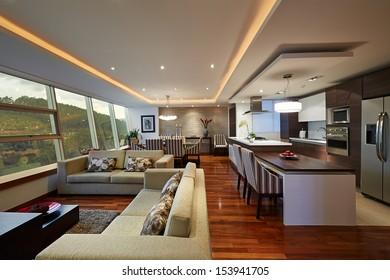 Interior design: Big Modern Living room and kitchen