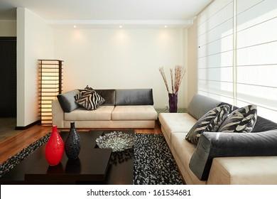 Interior design: Big modern living room