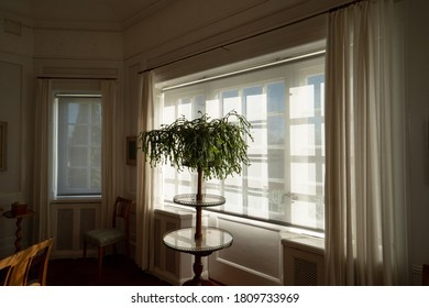 80s Home Interior Images Stock Photos Vectors Shutterstock