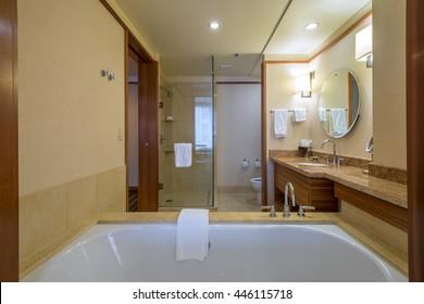 Interior design of a spacious, luxury bathroom.