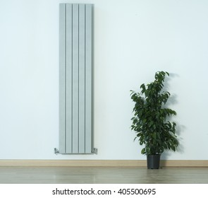 interior detail with radiator ant wall
