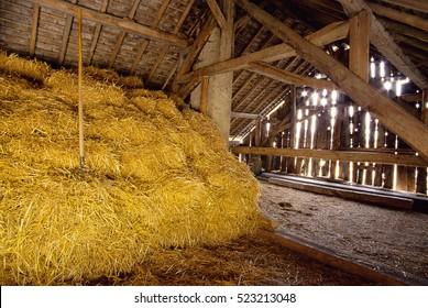 Interior of hay barn and sun light coming through wood