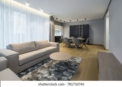 Interior of the living-studio in the apartment. Room, kitchen, furniture, sofa.