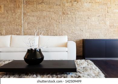 interior luxury apartment, beautiful living room