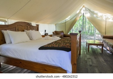 Interior of A Luxury Camping Tent