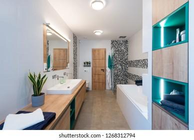 Interior of modern bathroom with bath tub and shower