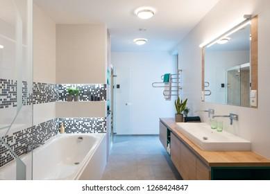 Interior of modern bathroom with bathtub and shower