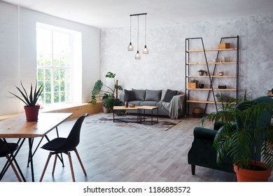 Interior of modern living room with comfortable sofa