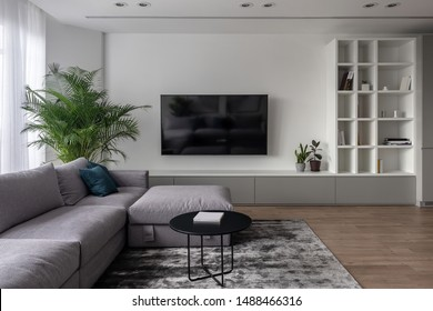 Interior in a modern style with white walls and a parquet with a carpet on the floor. There is a gray sofa with pillows, round black table, green plants in pots, TV, stand, shelves with books, locker.