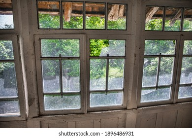 Interior of an old abandoned building. Vintage ruined dirty room. View to the garden from window
