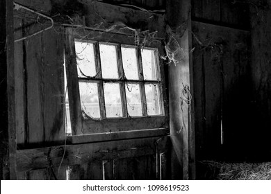 Interior Old Barn Window with Cobwebs, Spider Webs, Spider, Dirt, Grunge, Light and Shadows in Black and White