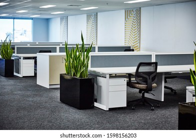Interior photography of a corporate fit out open plan office area with desks, filing cabinets, chairs, decorative wall panels and planter boxes with sansevieria