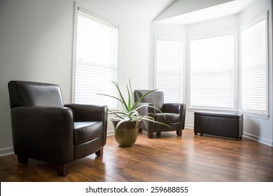 Interior room with wood laminate flooring, a large aloe plant and chairs.  Sun shining in the windows.