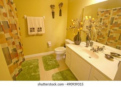 An Interior Shot of a Bathroom in Florida