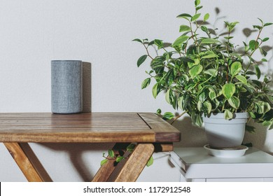 Interior and smart speaker