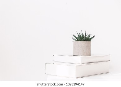 Interior style home decor with tree and book on white wall background