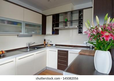 Interior of stylish modern house, kitchen