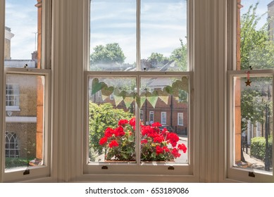 Interior of a Victorian British house with old wooden white windows  and red geraniums on the window sill facing a traditional English street