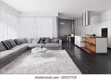 interior view of modern living room with sofa and carpet overlooking on the kitchen