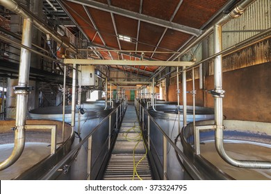 Interior view of a rum plant in Marie Galante, Caribbean, with brewing tanks and pipes to let sugar juice fermentation.