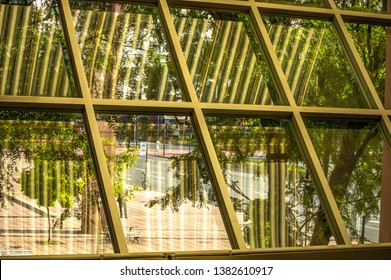 Interior view of a window glass reflecting trees, foliage, street and roof. And pattern forming by inox steel of the structure
