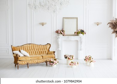 Interior of white room in classic royal luxury style with beautiful brown sofa