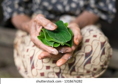The International Agency for Research on Cancer (IARC) revealed that betel nuts invite carcinogens. Consuming betel nuts continuously can increase the potential for oral cancer. Indonesia, Dec 2017