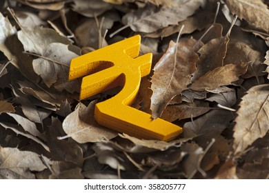 International economy money icon and currency units on autumn leaves