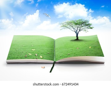 International human rights day concept: Opening book of nature with bird flying over blue sky background
