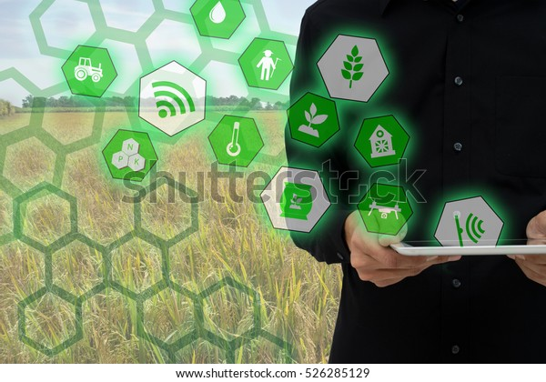 Internet of things(agriculture concept),smart farming,industrial agriculture.Farmer hold the tablet and to use augmented reality technology to control ,monitor and management in the field