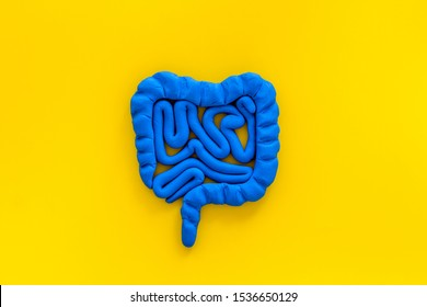 Intestines health. Guts on yellow background top view copy space