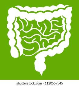 Intestines icon white isolated on green background. illustration