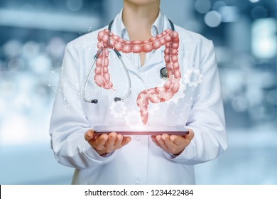 An intestines model is hanging above a device in doctor's hands at a hospital background. The concept is the professional internal organs treatment.