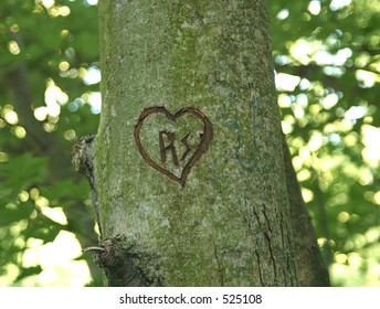 Intials and heart carved in tree