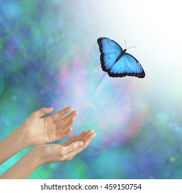 Into the Light - metaphorical representation of releasing or letting a soul go, into the light, using a butterfly, female hands and an ethereal background & white light