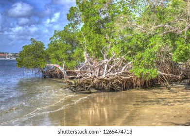Intracoastal Waterway in Jupiter Florida