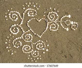 An intricate pattern of seashells lies on a wet, sandy background.