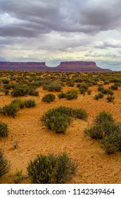 The intriguing land formations in the background provide a nice backdrop for the wildflowers and other desert vegetation in the expansive foreground, taken on the road to Millard Canyon in Canyonlands