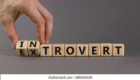 Introvert or extrovert symbol. Hand turns cubes and changes the word 'introvert' to 'extrovert'. Beautiful grey background, copy space. Psychological and Introvert or extrovert concept.