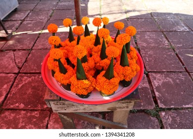 Invent orange flowers for pay respect Bhudda