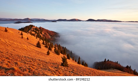 Inversion, red meadow and fog