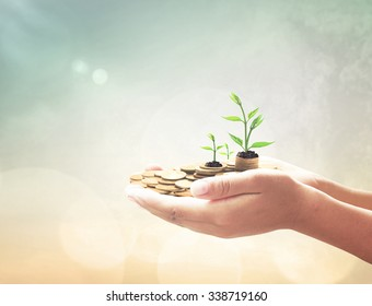 Invest and fund concept: Human hands save holding golden coin stack and small tree on blurred green nature background