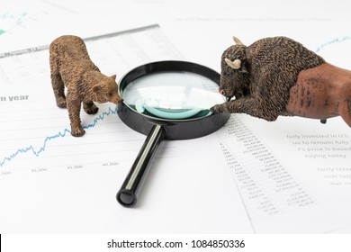 Investment bear and bull stock market concept, magnifying glass on chart and graph, price list report paper surround by bear and bull figure.