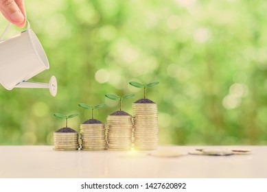 Investment for long-term sustainable growth concept : Investor pour water from a watering can to green sprout / small tree on rows of rising coins, depicts investing, wait to receive perpetual income