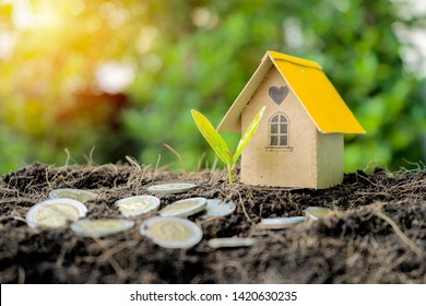 Investment in real estate, land, housing. Investment trends are growing in a good direction. The address is very necessary. House models, coins, trees growing on the soil pile