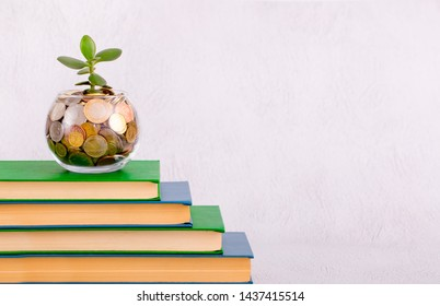 Investment in training. Piggy bank of a vase with coins and a plant sprout as a concept of investment and long-term revenue growth. Accumulated money for university entrance to college or to courses.