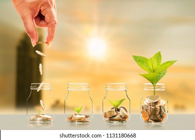 Investor hand hold and drop a gold coin in the bottle and plant growing with savings money on photo blur cityscape on sunlight background, Business investment and saving money concept.