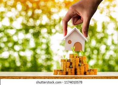 Investor hand hold a home model on the stacked coin with many increase and plant grow value on bokeh background in the public park, financial of real estate business investment and buy house concept.